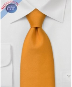 100% Silk Orange Tie by AHFASHION